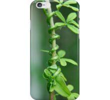 Twisting Stem iPhone Case/Skin