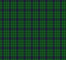 00039 Duncan Clan/Family Tartan  by Detnecs2013