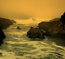 Mendocino Coast, N. California, #N01 by Ascender Photography