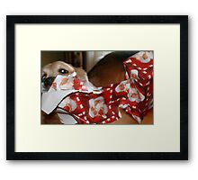 Our Automatic Unwrapper! Framed Print