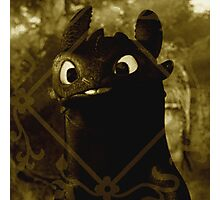 Toothless the night fury Photographic Print