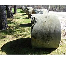 Row of rocks and trees Photographic Print