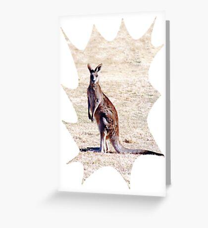 Kangaroo Watching Greeting Card