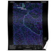 USGS Topo Map Oregon Bingham Springs 279046 1995 24000 Inverted Poster