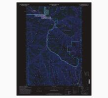 USGS Topo Map Oregon Bingham Springs 279046 1995 24000 Inverted One Piece - Long Sleeve