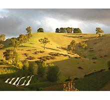 Cudlee Creek Vista - South Australia Photographic Print