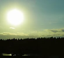 Sun Over Trees by Caren