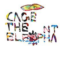 Cage the Elephant Photographic Print