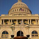 """The Capital Building Shines by Christine """"Xine"""" Segalas"""
