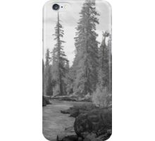 Eloquent Light - Rogue River - Oregon iPhone Case/Skin
