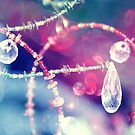 Jewels by ©Maria Medeiros