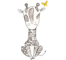 Grey Giraffe and Yellow Butterfly Photographic Print