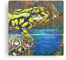Australian Corroboree Frog in Pastel  Canvas Print