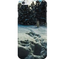 A  disturbance In The Snow  iPhone Case/Skin