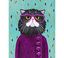 Cat's New Autumn Coat Photographic Print