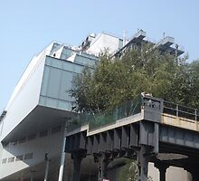 Whitney Museum at the High Line, New York City by lenspiro