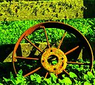 """""""Wheel in the Weeds"""" by waddleudo"""