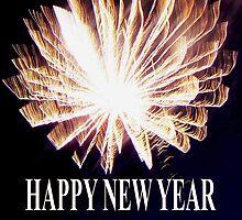 HAPPY NEW YEAR - 2011 by Dawn B Davies-McIninch