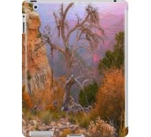 Lay My Ashes Here iPad Case/Skin