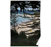Norfolk Pines Poster