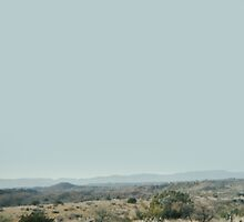 arizona desert by shawdesignco