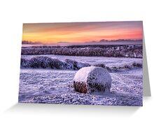 Cold Christmas Greeting Card