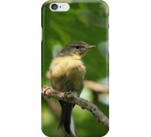 Tennessee Warbler iPhone Case/Skin