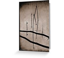 Silver Reflections Greeting Card