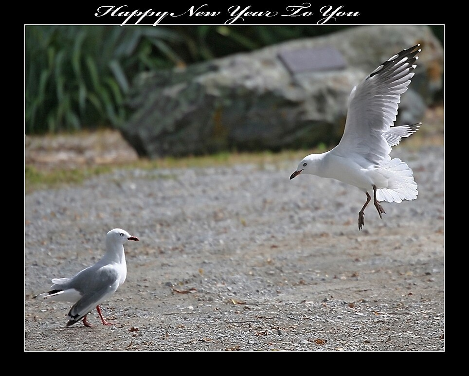 Happy New Year to you:) by Nicole Besch