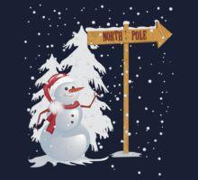 Snow man  by Richard Laschon
