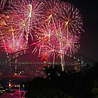 Sydney #2 | New Years Eve 2010 | Fireworks 9pm by Bill Fonseca