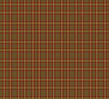 00048 Reid Portrait/Artifact Tartan  by Detnecs2013