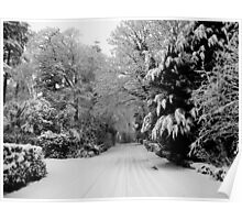 The Lake District: Walking in a Winter Wonderland Poster