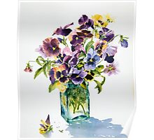 Pansies, backlit Poster