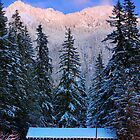 Mount Rainier winter evening by Inge Johnsson