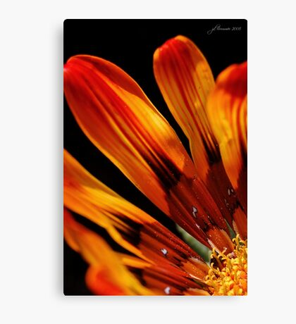 Fire and Light Canvas Print