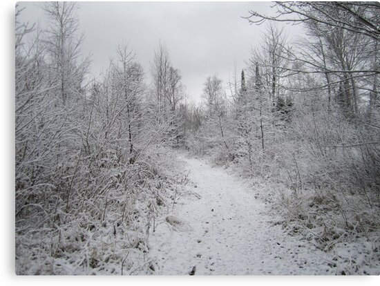First snows of winter on the northland Trails. by Seth Stenzel