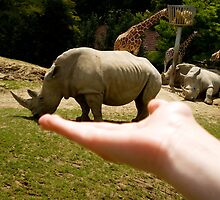 A rhino in hand is worth two in the bushes.. by Luke J Prosser