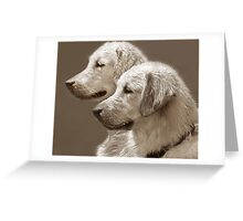 Goldies ~ After The Swim Greeting Card