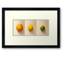 Orange, Lemon and Lime Framed Print