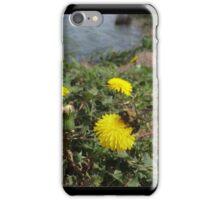 Big Bumble Bee iPhone Case/Skin