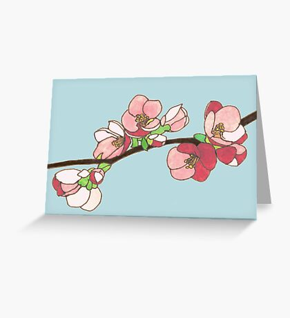 Pink on Blue Blossoms Greeting Card