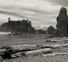 Ruby Beach - Oympic Peninsula Washington  ~ Black & White by Lucinda Walter
