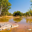 River Crossing in the Kimberley near the Bungle Bungles by johnrf
