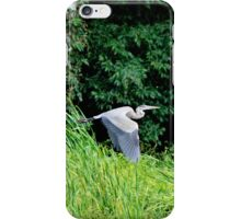 Flight of the Heron iPhone Case/Skin