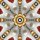 Star of Wonder by kenspics