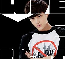 EXO Kai 'Love Me Right' by ikpopstore