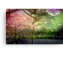 A Night of Fantasy on a Moon Lit Night ©  Canvas Print