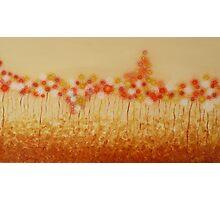 Anna's Flowers Photographic Print
