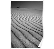 South West Australia - Sand dunes - Fitzgerald River National Park Poster